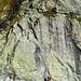 So siehts es dann aus der anderen Perspektive aus. Klettergarten direkt am Obersee.