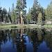 Im Aufstieg zum Mount Dana - Der Weg führt anfangs über die Dana Meadows, vorbei an zahlreichen kleinen Seen.