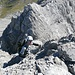 Der Aufschwung zu P. 2756 erfordert Konzentration - die Felsqualität ist lechtaltypisch schlecht