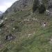 Unterwegs  nach Alpe Cardedo