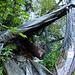 Holzlager, auch als Regenschutz zu nutzen..., wer's mag
