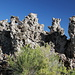 Am Mono Lake (South Tufa Area).