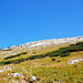 Über schöne Weiden zum Gipfel