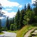 """Bei der Bushaltestelle """"Trélechamp"""" zweigt der Aufstiegsweg zum Lac Blanc ab"""