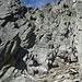Tanja klettert über das anspruchsvolle Gelände vom Gipfel ab