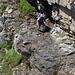 Lena in der Schlüsselstelle. Etwas erschwerend kam hinzu, dass Schmelzwasser von oben auf das schmale Felsband hinuntertropfte...
