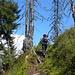 steiler, aber abwechslungsreicher Aufstieg zum Bristenhüttli