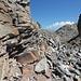 Panum Crater, Plug Trail - Unterwegs im Bereich des Lava-Doms. Am Wegrand.
