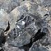 Panum Crater, Plug Trail - Unterwegs im Bereich des Lava-Doms. Unzählige, auch große Brocken aus Obsidian können aus nächster Nähe betrachtet werden. Das Sammeln ist natürlich verboten.