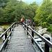 Ponte sul Rio Loana