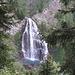 Tra i pini scorgiamo una bella cascata