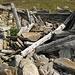 Die Reste von Alpe di Canee