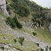 Die 2. Schlüsselstelle von oben. Besondere Aufmerksamkeit bedarf das Stück in der obener Bildmitte oberhalb des Felsabbruchs (Pfad sichtbar).