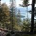 Blick zum Walchensee und Insel Sassau