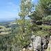 """Unterwegs auf Szczeliniec Wielki (Große Heuscheuer) - Ausblicke von den Wielkie Tarasy (Große Terrassen) an der Schronisko """"Na Szczelińcu"""" (Berghütte)."""
