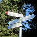 hier kommt der Weg vom Lecknertal hoch