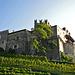Burg Hochnaturns. Sie befindet sich in Privatbesitz und kann nicht besichtigt werden.