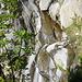 Dicht am Wasserfall
