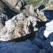 Klettertechnische Schlüsselstelle von oben - der senkrechte Abbruch über dem obersten Dreischartl