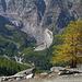 Herbstfarben über der Seitenmoräne des Feegletschers