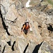 Der Nordostgrat - ein richtiger Schutthaufen
