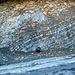 Geologischer Aufschluss am Strassenrand