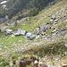 Alpe della Redòrta. Sulle Alpi Ticinesi abbiamo visto alpeggi più gradevoli all'occhio... ma fa nagott!