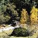 Herbstimpressionen im Val Schmorras.