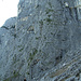 die Klettertour beginnt links oberhalb von meinem Partner
