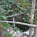 Alte Wolfsfalle bei Alnasca