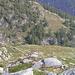 Alpe Saler