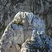 Die Gipfel der Scherenspitzen - Wer wagt eine Slackline-Überschreitung?
