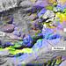 Falschfarben-Satellitenbild der Albularegion: Die Grenze zwischen Dolomit (Piz Üertsch) und Bündnerschiefer (Piz Blaisun) ist sehr deutlich erkennbar.
