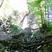 Abstieg durch den lauschigen Wald zurück ins Tal