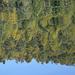 Impressionen vom Lagh da Saoseo - das Bild ist richtig herum, steht nicht auf dem Kopf