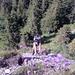 Stefan am Klettern