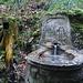 originell die Wasserfassung mit Trinkglas im Baumstrunk