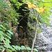 Der gut versteckte Eingang der Kristallhöhle im Steinbruch nordwestlich von Hochwald. Der Ort scheint kaum jemandem bekannt zu sein, denn keine Pfadspuren sind dort im Unterholz zu erkennen!