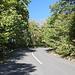 Im Aufstieg zum Kékestető - Ca. 300 m muss man direkt auf der zum Kékestető führenden Straße laufen, anschließend führt ein schmaler Pfad neben der Straße entlang (links, hinter der Leitplanke).