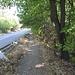 Im Abstieg vom Kékestető - Im Wegabschnitt hinter der Leitplanke, nicht besonders schön, dafür aber bestens markiert. Gleich geht's direkt auf der Straße entlang.