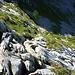 Nicht gerade hundefreundliches, steiles Schroffengelände erschwert den Abstieg zum Urseli.Hinweis: nur für hartgesottene und unerschütterliche Hunde!