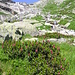Steilstufe zwischen Gelmerhütte und -see