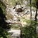 Die Einsturzstelle Rappenloch vom Staufensee aus