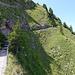 Der Abzweiger rechts nach Kurve 37. Wer genau schaut, sieht eine Mythenlegende auf dem alten Weg durch die Totenplangg.