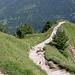 Der Weg von oben. In der Bildmitte ist gut zu sehen, wie der alte Weg links abzweigt.