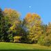 Herbstfarben in Habkern