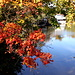 Herbstliche Stimmung an der Amper in Bruck