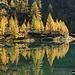 Riflessi nel Lago di Sascòla