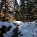 Der Weg wird wieder schneefrei je weiter man runterkommt
