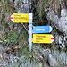 Wegweiser auf dem Forstweg - hier hat man die Wahl zwischen weiss-blau und weiss-rot